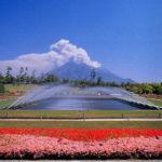 年間を通して楽しめる!吉野公園イベント一覧