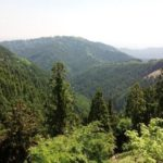 楽しみ方がたくさん!高尾山のおすすめ登山ルート